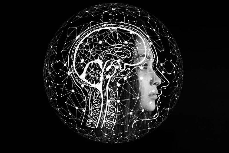 Brain scan illustration
